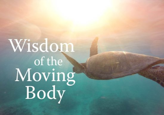 Wisdom of the Moving Body